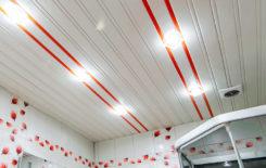 Порядок монтажа точечных светильников в потолок из ПВХ-панелей